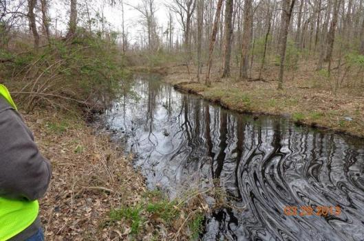 Oil in unnamed creek connected to cove attached to Lake Conway. (Photo from EPA's On-Scene Coordinator)