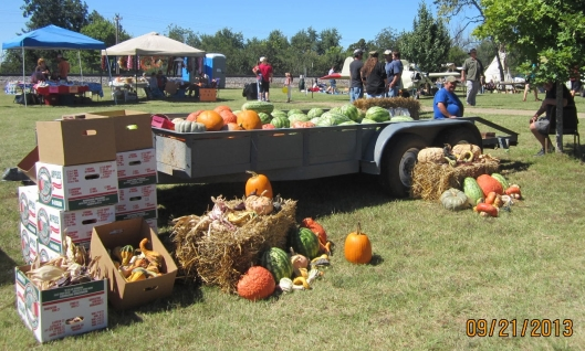 Fall pumpkins helped decorate the Kosh Heritage Day festival and set the theme for Fall in the Ozarks. (Hill 'n Holler staff photo)