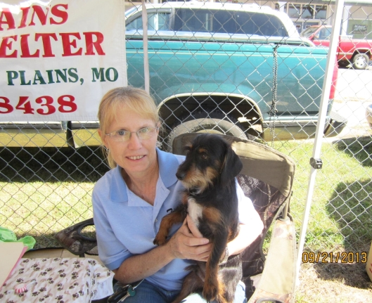 Benji, a year-old long haired dachshund, visited the festival in hopes of finding a home. He was brought by the West Plains Regional Animal Shelter  If you are interested in Benji or any other pet, please stop by the shelter at 1438 State Route BB by or call (214) 256-8438.