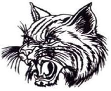 Thayer Bobcat