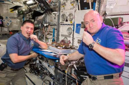 The space station is the only microgravity platform for the long-term testing of new life support and crew health systems, advanced habitat modules, and other technologies needed to decrease reliance on Earth. NASA astronauts Kjell Lindgren, left, and Scott Kelly are pictured here, just before the halfway point of Kelly's one-year mission on station. (NASA photo)