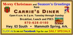 Carries Diner - Christmas 2015